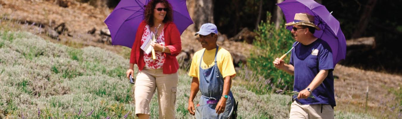 Maui Agritourism Grows