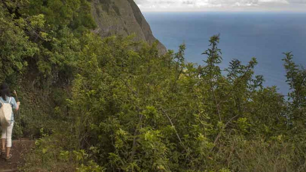 Molokai has limited access by car, which makes it ideal for hiking. // © 2013 Mark Edward Harris 2