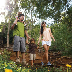 The Royal Coconut Coast features hiking trails for the whole family. // © 2013 Gelston Dwight