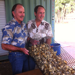 John and David Morgan of Kualoa Ranch display their farm-raised oysters. // © 2014 Kualoa