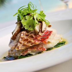 <p>Orchids at Oahu's Halekulani hotel serves up steamed onaga fish. // © 2015 Fairmont Orchid</p><p>Feature image (above): Sea House Restaurant at...
