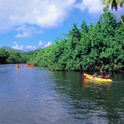 Why Travel Agents Should Sell Kauai : TravelAge West