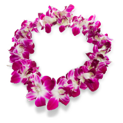 <p>Clients who visit Oahu in May can attend the annual Lei Day celebration and the Lantern Floating Hawaii ceremony. // © 2017 iStock</p><p>Feature...