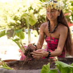 <p>Wainani Kealoha shares her passion for taro with tour-goers. // © 2017 J. Anthony Martinez</p><p>Feature image (above): Hawaiian nose-flute carver...