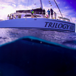 <p>Trilogy Excursions' newest sailing catamaran // © 2017 Trilogy Excursions</p><p>Feature image (above): Guests can swim with marine life. // © 2017...