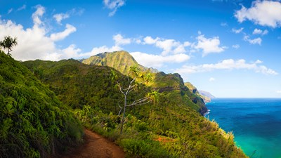 4 Things to Know Before Visiting Kauai's North Shore