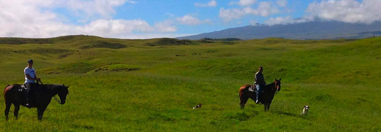 Hawaii Island on Horseback at Dahana Ranch