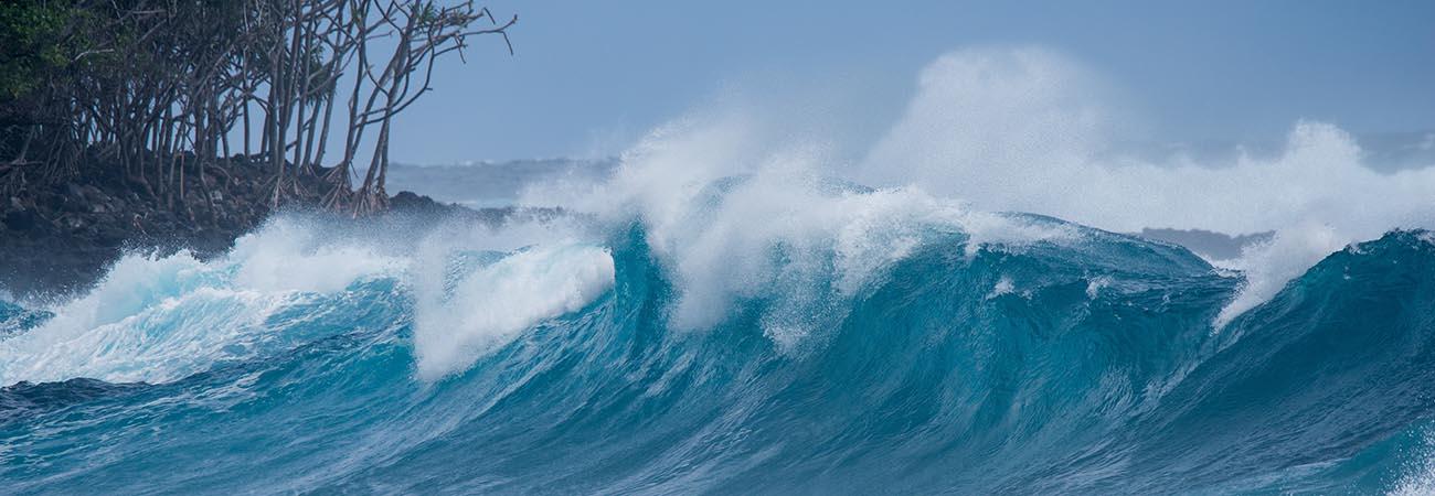 5 Don'ts During a Hawaii Vacation