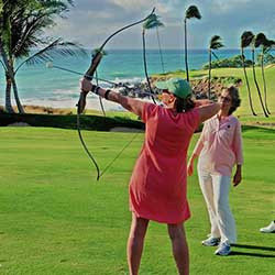 <p>Traditional golf takes flight with Aero Golf, available at Mauna Kea Golf Course on Hawaii Island. // © 2016 Aero Golf</p><p>Feature image (above):...