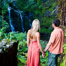 <p>Maui's Hana Highway boasts roadside waterfalls, the perfect backdrop for a wedding proposal. // © 2015 HTA/Tor Johnson</p><p>Feature image (above):...