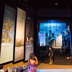 <p>Imiloa Astronomy Center of Hawaii's interactive exhibits appeal to all ages. // © 2016 Imiloa Astronomy Center of Hawaii</p><p>Feature image...