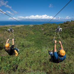 Maui zipline tours provide thrills as well as spectacular views. // © Kapalua Ziplines