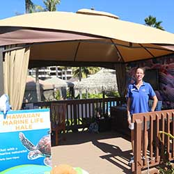 <p>Maui Ocean Center's new Marine Life Hale, based at Sheraton Maui, gives clients a sneak preview of the aquarium's treasures. // © 2016 Maui Ocean...