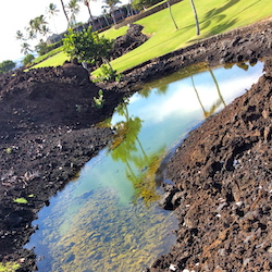 <p>The Shoreline Trail at Mauna Lani Resort offers spectacular inland and ocean views. // © 2014 Diane Merlino</p><p>Feature image (above): One- and...
