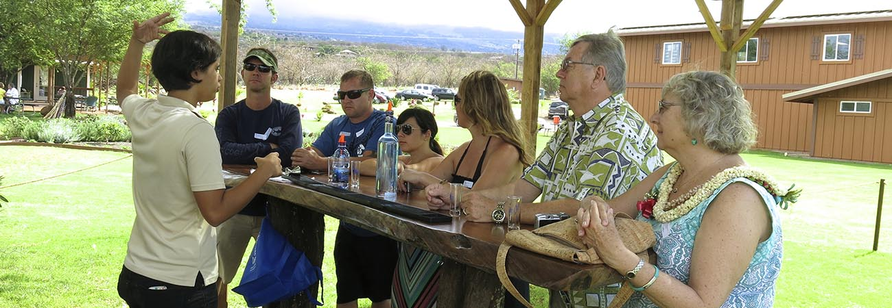 Where to Sip Ocean Vodka on Maui