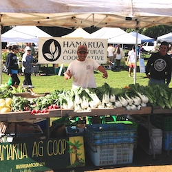<p>Locals and visitors mingle over fresh produce and much more at Waimea's three farmers markets. // © 2014 Marty Wentzel</p><p>Feature image (above):...