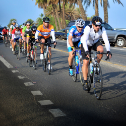 The Haleiwa Metric Century Ride draws bikers of all ages to Oahu's scenic North Shore. // © 2014 Hawaii Bicycling League