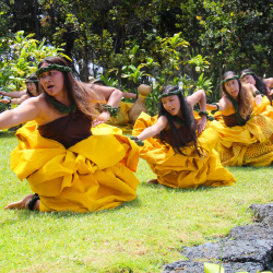 Hula dancers at Hawaii Volcanoes National Park // © 2016 NPS/Jay Robinson
