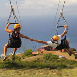 <p>Kapalua Ziplines features 2 miles of side-by-side soaring. // © 2015 Kapalua Ziplines</p><p>Feature image (above): Pine-lined roads invite outdoor...