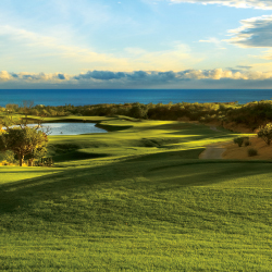 Existing golf courses will be up and running by mid-December. // © 2014 Los Cobos Tourism Board