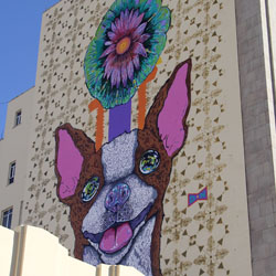 <p>Don't expect to see real Chihuahua dogs running around the city. // © 2017 Mark Chesnut – LatinFlyer.com</p><p>Feature image (above): Chihuahua...