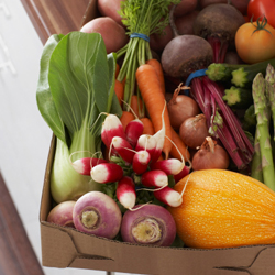 <p>An increasing number of vegetarian, vegan and gluten-free menus are available at hotels throughout Mexico. // © 2014 Thinkstock</p><p>Feature image...