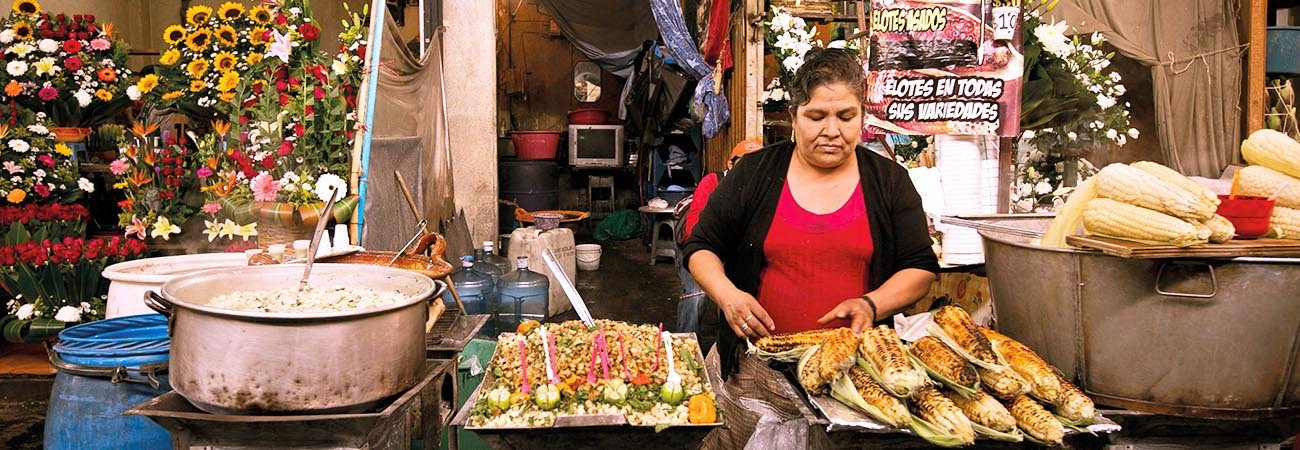 Suggest These Excellent Food Tour Companies in Mexico