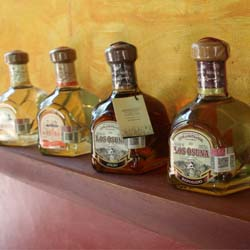 <p>Take a short day trip from Mazatlan to visit a small-scale mezcal factory. // © 2017 Mark Chesnut LatinFlyer.com</p><p>Feature image (above):...