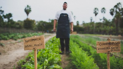 Organic Farms in Los Cabos and Todos Santos