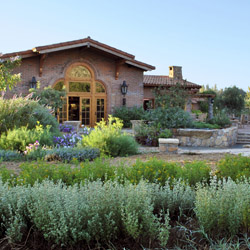 <p>Rancho La Puerta guests can pick ingredients from the property's farm before joining a cooking class at the scenic structure known as La Cocina Que...
