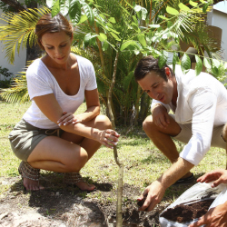 <p>Sandos Caracol Eco Resort wants to appeal to multigenerational groups. // © 2016 Sandos Resorts</p><div></div>