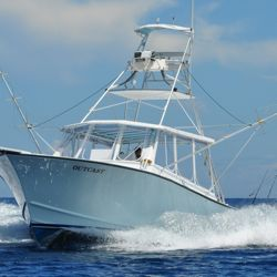 More than 125 fishing fleets are expected to compete in Bisbee's Black and Blue Marlin tournament. // © Los Cabos Tourism Board