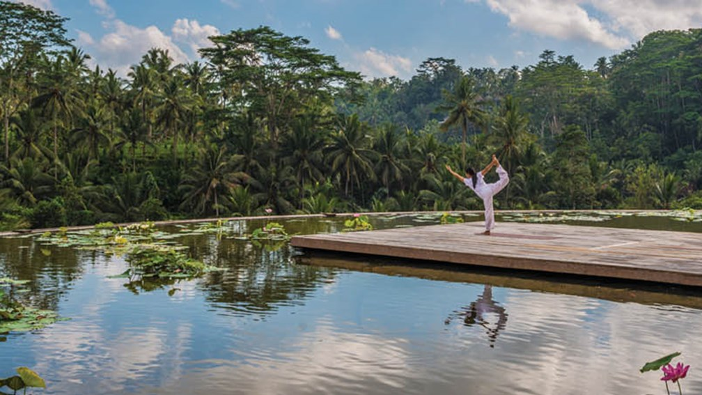 How to Plan the Ultimate Bali Wellness Retreat