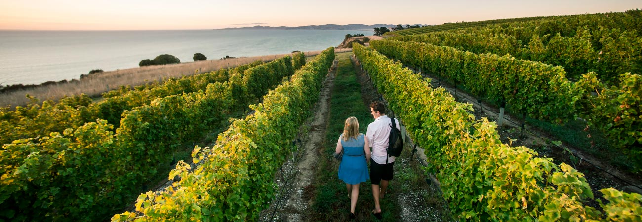 Today's Top Destinations for Wine Travel