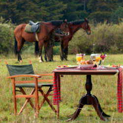 <p>Fairmont guests can reserve a bush breakfast or dinner. // © 2016 Fairmont Hotels and Resorts</p><p>Feature image (above): The common pool and...