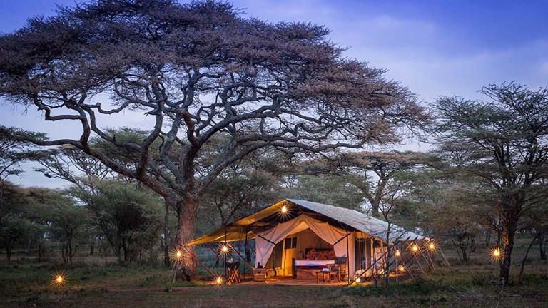 Wilderness Travel sets guests up in luxury tents during Big Five itineraries.
