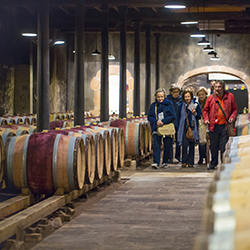 <p>Guests will visit a winery on Abercrombie & Kent's new 11-day Food & Wine of France itinerary. // © 2015 Abercrombie &...
