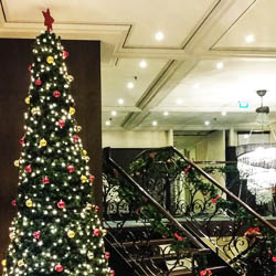 <p>AmaWaterways predicts that its Christmas cruises will be popular with the Latin multigenerational demographic. // © 2017 AmaWaterways</p><p>Feature...