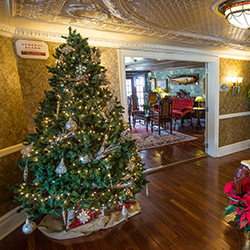 <p>During the holiday season, American Queen Steamboat Company decorates American Queen's second deck. // © 2015 American Queen Steamboat...