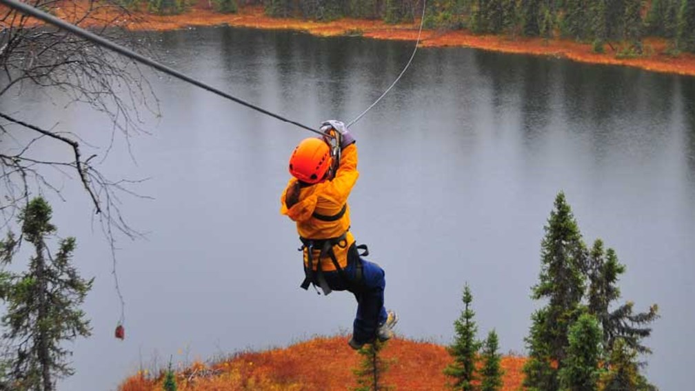 Zipliners can soar above the Alaskan wilderness on an excursion with Denali Zipline Tours. // © 2014 Christopher Batin 3