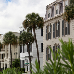 A local recommends some of her favorite parts of Charleston. // © 2015 Noni Brueckner