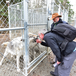 <p>Behind the scenes at The Alaska Zoo // © 2016 Christopher Batin</p><p>Feature image (above): During the Zookeeper for a Day program, guests feed...