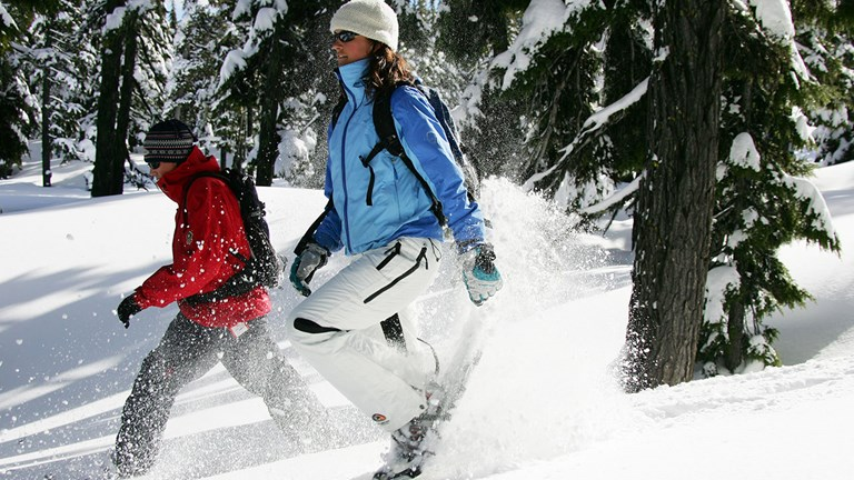 Discover Bend's forested lands by snowshoe.