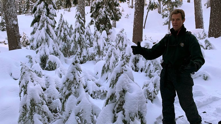 Naturalist guides, such as founder Dave Nissen, share insight into the environment during a snowshoeing tour.
