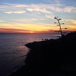 <p>The Palisade cliffs along the Pacific Coast Highway are perfect spots for catching stunning sunset views. // © 2014 Manasi Patel</p><p>Feature...