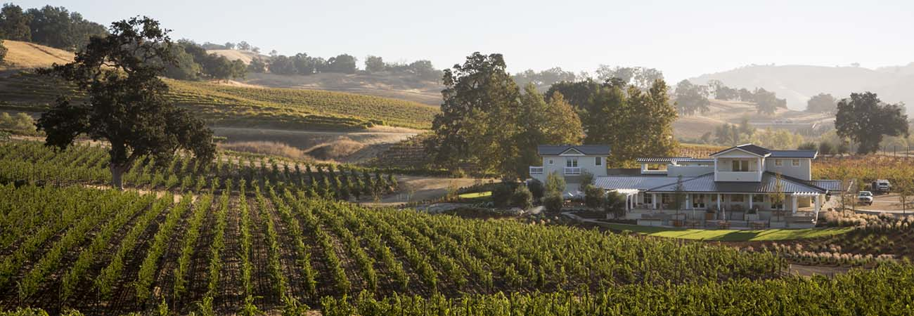 4 Top Winery Experiences in Paso Robles, California