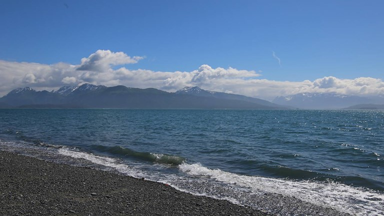 The black-sand beach opposite Homer Spit gives visitors a sense of the area's nature offerings.