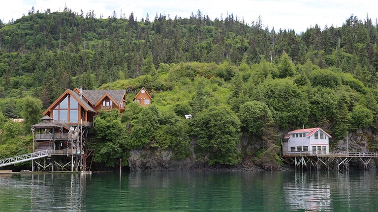 Halibut Cove is a popular location for fishing, kayaking and spotting marine and wildlife.