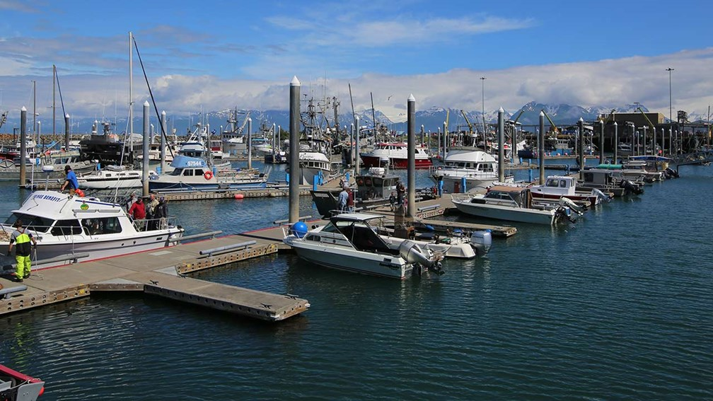 What to Do in Homer, Alaska, Besides Fishing