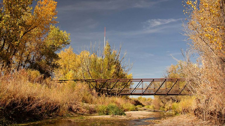 clients can immerse themselves in nature on Cherry Creek Trail.